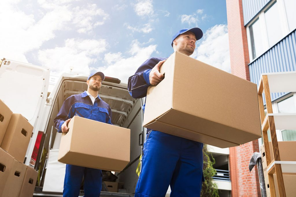Outstanding Exceptional Whangarei Furniture Movers Relaxmove Relax Download Free Architecture Designs Scobabritishbridgeorg